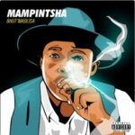 Mampintsha – Msheke Sheke Ft. DJ Tira & Distruction Boyz